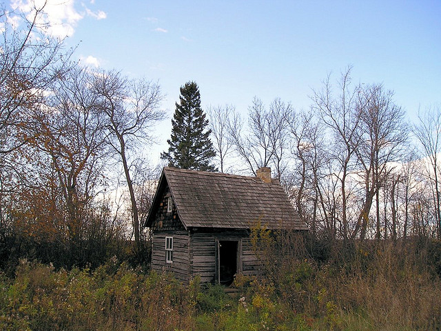 Lonely Log Cabin