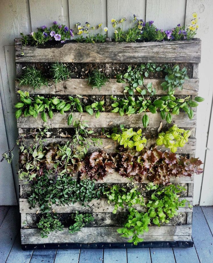 Pallet Plants