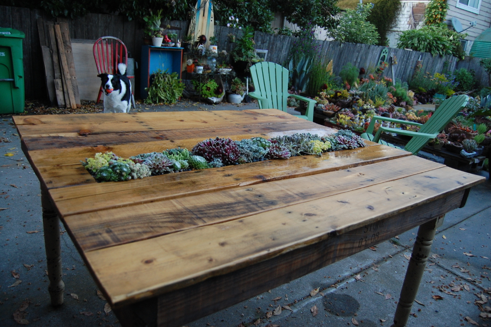 Pallet Table Plant